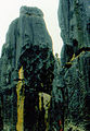 Stone forest 1983-24.jpg