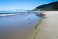 Stonefield Beach-2.jpg
