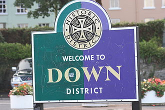 Down District Council - Image: Strangford (18), August 2009