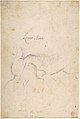 Study for a Triton (recto); Anatomical Studies ? (verso) MET DP807876.jpg