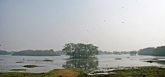 Sultanpur National Park - Sultanpur Bird Sanctuary became a National Park in 1991
