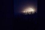 Super Blue Blood Moon (NHQ201801310001).jpg