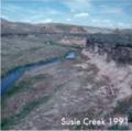 Susie Creek 1991 BLM.png