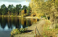Sutton Coldfield - Blackroot Pool.jpg