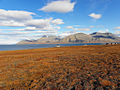 Svalbard - landscape in autumn.jpg