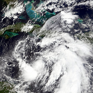 Meteorological history of Hurricane Wilma - Tropical Depression Twenty-Four on October 16