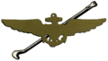TailHook insignia.png