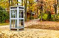 Telephone booth, Bois de Vincennes, Paris 23 November 2011.jpg