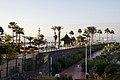 Tenerife Adeje Anthelia C.jpg