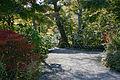 Tenryuji Kyoto14n4592.jpg
