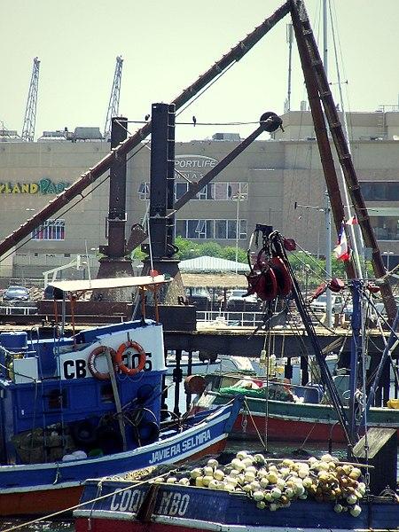 File:Terminal Pesquero de Antofagasta (Aparejos y equipos) (6).JPG