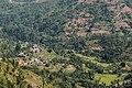 Terrace Farming in Nepal in Rakathum VDC-0377.jpg
