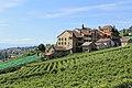 Terrasses de Lavaux - panoramio (77).jpg