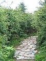 The Anglesey Coastal Path near Trwyn-du - geograph.org.uk - 489244.jpg