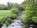 The Boro River (2) - geograph.org.uk - 442945.jpg