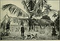 The Cuba review and bulletin (1906) (14580234017).jpg