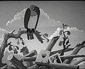 The Eagle and the Cat 1944 film.jpg