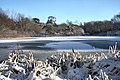 The Fairy Lake, Ickworth Park - geograph.org.uk - 1628807.jpg