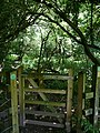 The Gate to Asham Wood - geograph.org.uk - 491969.jpg
