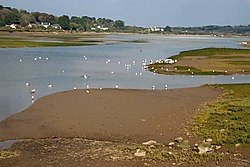 A tidal estuary at low water
