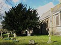 The churchyard, Eastgate - geograph.org.uk - 728415.jpg