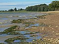 The exposed shoreline of Rutland Water - geograph.org.uk - 1002136.jpg