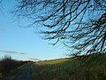The road by Park Head - geograph.org.uk - 1198426.jpg