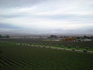 Sonoma Valley - View of the Sonoma Valley