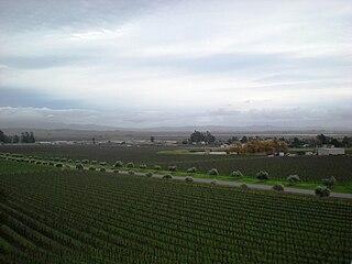 region in Sonoma County, California