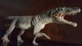 Ticinosuchus ferox (Museo dei fossili del Monte San Giorgio, Meride).png