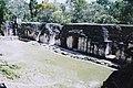 Tikal (10514802725).jpg