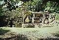 Tikal (9791208685).jpg