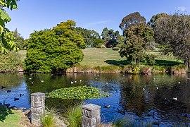 Timaru Botanic Garden, New Zealand.jpg