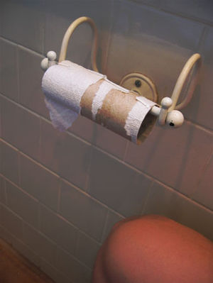 An used toilet paper roll