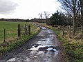 Track leading to Ormesby Grange farm - geograph.org.uk - 678421.jpg