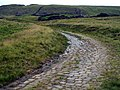 Track to Loft End Quarry - geograph.org.uk - 486180.jpg