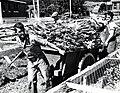 Transport de la morue - Perce - 1940.jpg