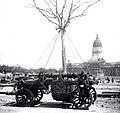 Traslado de un ejemplar a la plaza del Congreso en construcción - 1909.jpeg