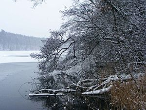 Trebuser See Winter.JPG