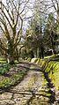 Trewithen Gardens. - panoramio.jpg
