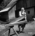 Trlica, Hrastno 1961.jpg