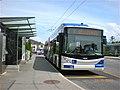TrolleybusLausanneLine8.jpg