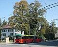 Trolleybus des TPB.JPG