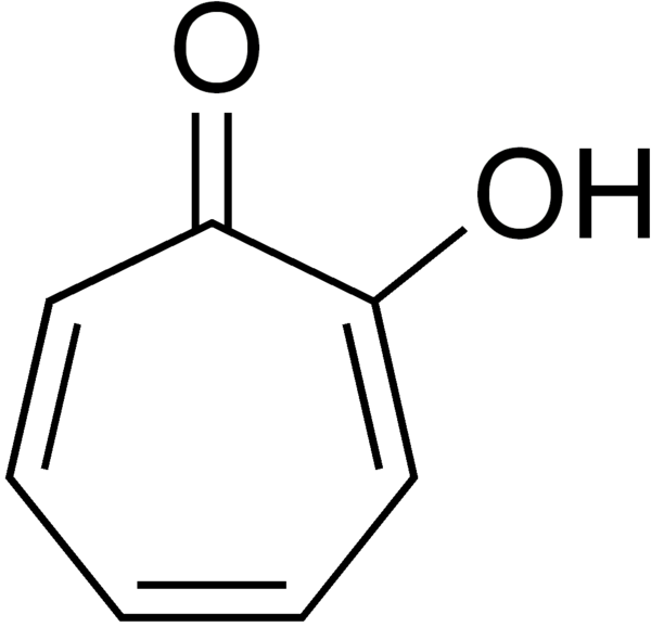 dopamine sythesis