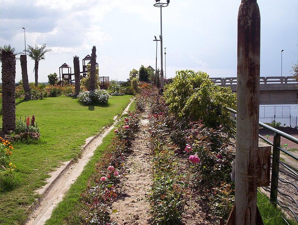 Tulip lawn Jhelum 002