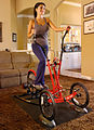 Turn your outdoor elliptical bike into an indoor elliptical crosstrainer.jpg