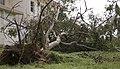 Typhoon Neoguri storms through Okinawa 140710-M-EB647-007.jpg
