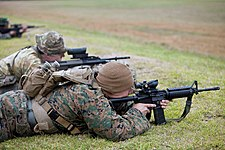 Sharpshooter meaning