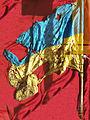 Ukrainian flag from Ilovaisk battlefield.jpg