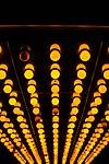 Under the Spotlights.jpg